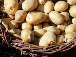 俄檢疫部門:中國薯仔對人體有害
