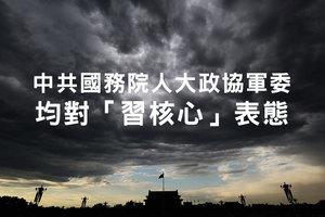 中共國務院人大政協軍委均對「習核心」表態