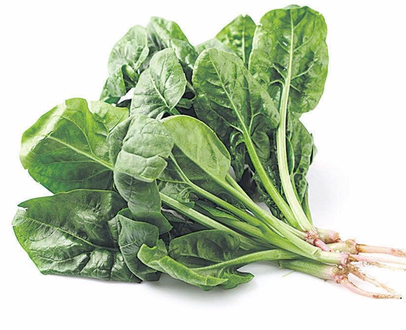 菠菜不僅好吃有營養,還能幫人探測化學 成份。(Fotolia)