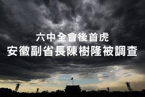 六中全會後首虎 安徽副省長陳樹隆被調查