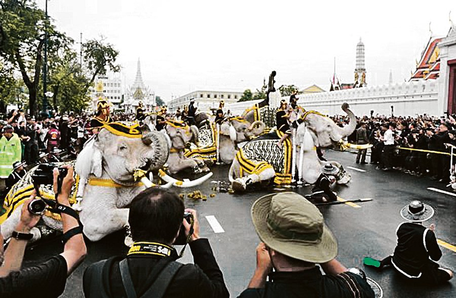 泰國大象弔唁泰王 場面感人