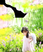 【醫案】 斷翅小天使