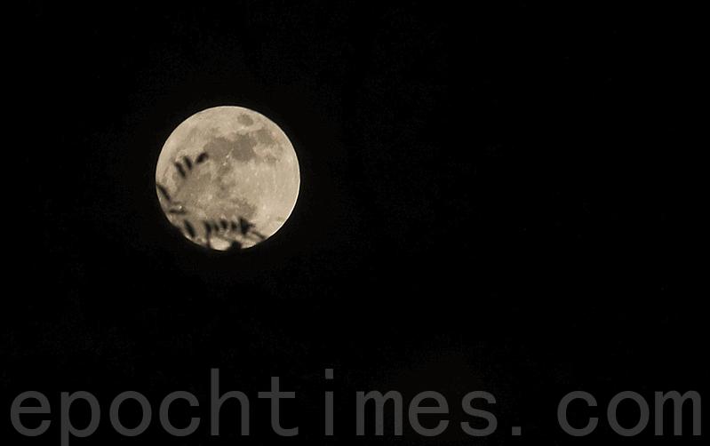 香港14日晚間上空出現超級月亮。(余鋼/大紀元)