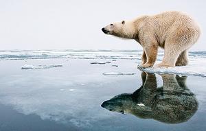 北極氣溫升高20℃ 極地寒風南移 原因不明