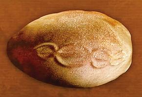 史前石頭上刻著DNA圖解?