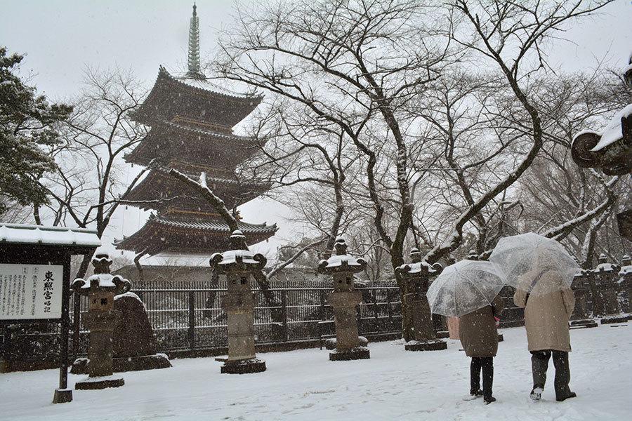 受到寒流影響,日本關東地區今晚起到24日可能會下雪。東京市中心若下了11月雪,將是54年來僅見。圖為下雪中的東京市中心公園。(KAZUHIRO NOGI/AFP)