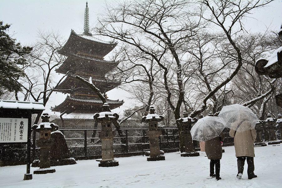 東京可能下11月雪  54年來僅見
