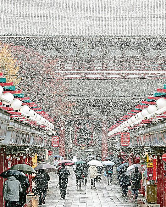 54年不遇 東京降11月雪
