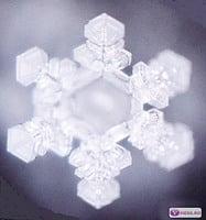 微觀世界中水百度會「結冰」