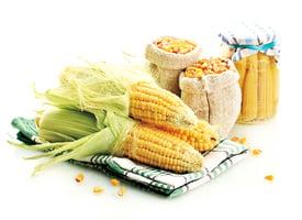 不要丟棄 菜葉子營養藥用效果佳
