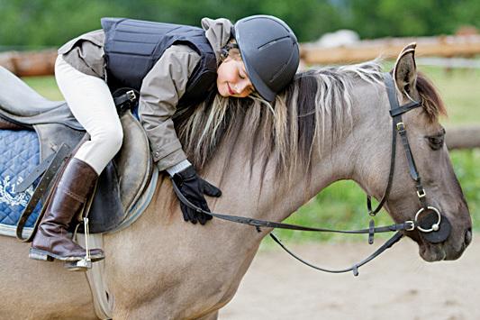 研究首次發現  馬也會看人臉色