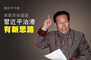專訪辛子陵:梁振英被逼退 習近平治港有新思路