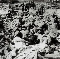 【揭秘】三十年前中共為何極力掩蓋南京大屠殺