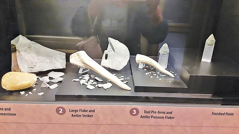 出土的獸骨、石器工具。(圖/Sunny)