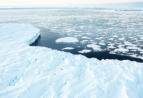 北極氣溫創高南極易受衝擊