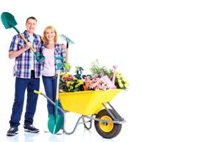 12法寶 讓婚姻生活幸福美滿