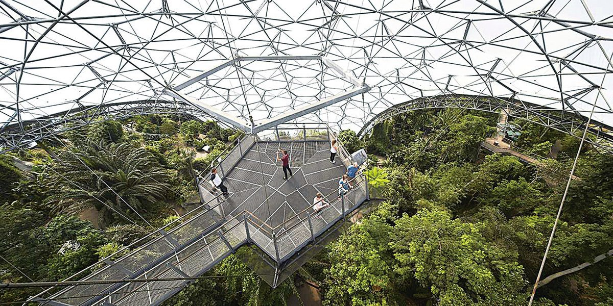 漫步在「林冠走廊」(Treetops Walkway),從上而下俯瞰整個館園,感受熱帶雨林的壯麗景觀。(Eden Project)