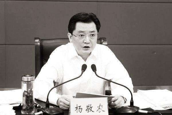 安徽省政府秘書長楊敬農日前被宣佈調查。(網絡圖片)