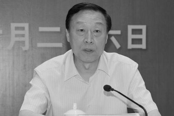 今年6月底被免去江蘇省委書記的羅志軍。(網絡圖片)