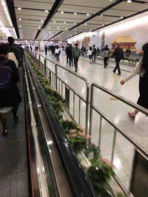 近日不斷有市民和團體在「故宮壁」前抗議,港鐵在通道前沿行人輸送帶架起一排鐵馬,又派職員維持秩序。(公民黨冼豪輝facebook圖片)