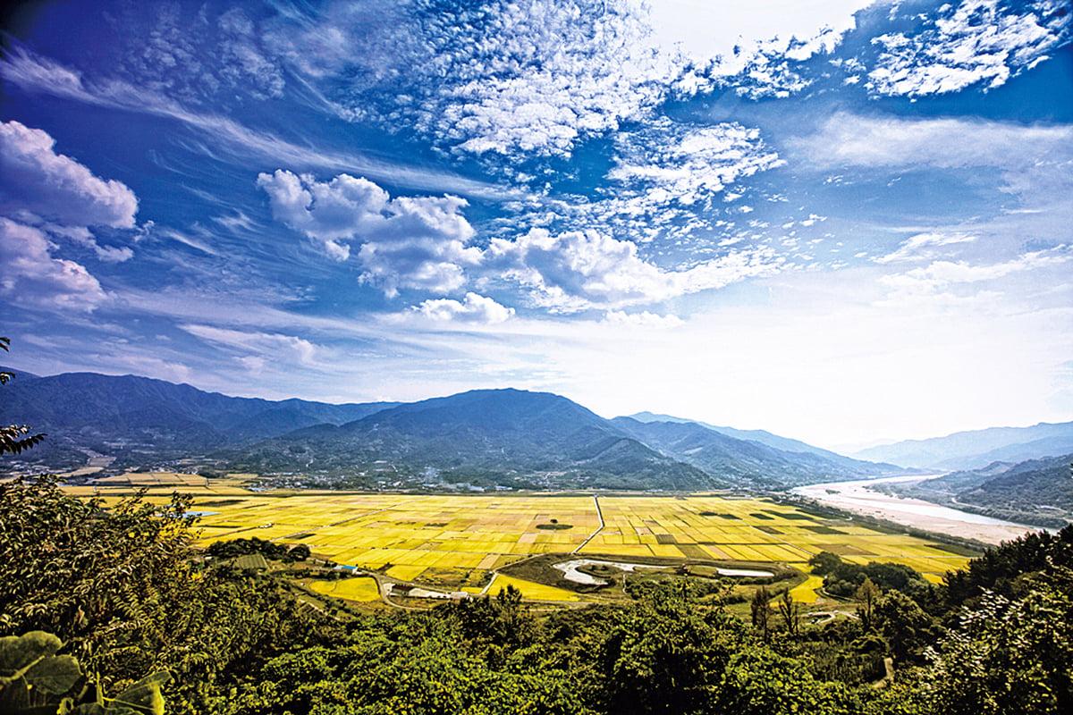 無污染的慶尚南道河東郡。(網絡圖片)
