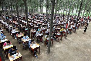 到底誰上學?大陸家長熱議作業該不該簽字