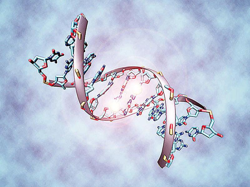 生長環境和文化差異刻在人體DNA中