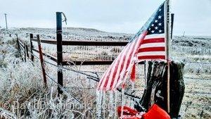 冰風暴襲美國中西部 多宗車禍造成至少六死