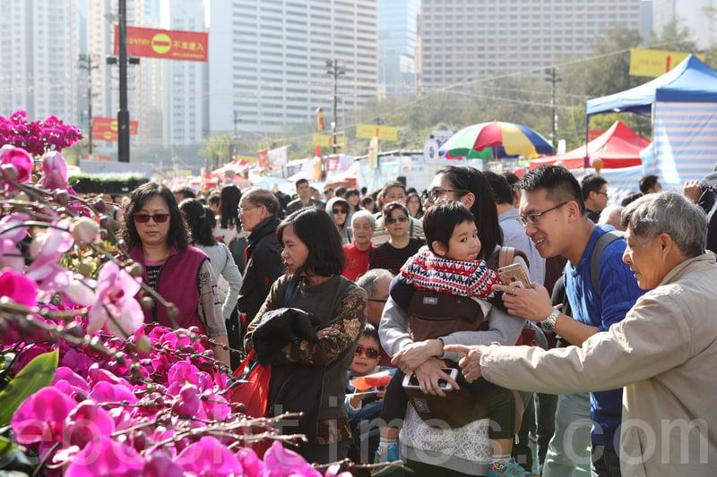 維園年宵花市昨日開市,適逢星期日,不少市民帶同家人「行花市」。(余鋼/大紀元)