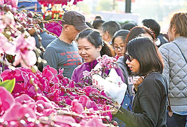 蘭花、桃花、水仙……是必不可少的年花。(余鋼/大紀元)