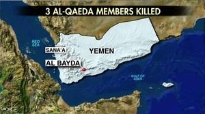 特朗普上任後首次反恐行動 擊斃十四名蓋達成員