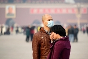 中美研究:吸北京霧霾三週 小白鼠罹肥胖症