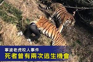 寧波老虎咬人事件 死者曾有兩次逃生機會
