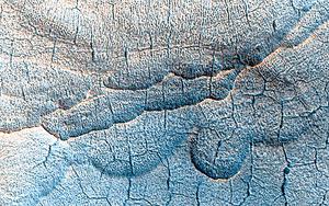 火星大氣層或存在微生物