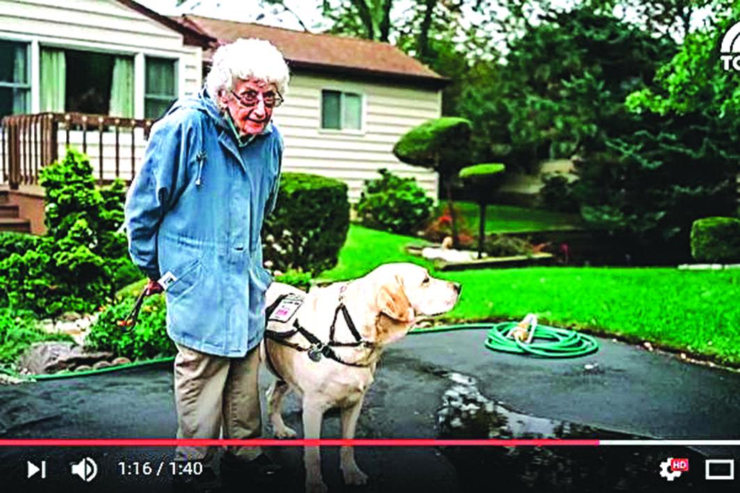 9旬老婦韋斯和她的愛犬喬伊。(影片擷圖)