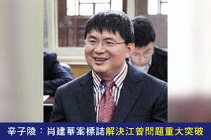 專訪辛子陵:肖建華案標誌解決江曾問題重大突破