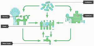 超級細菌「可能滲透中國社區」