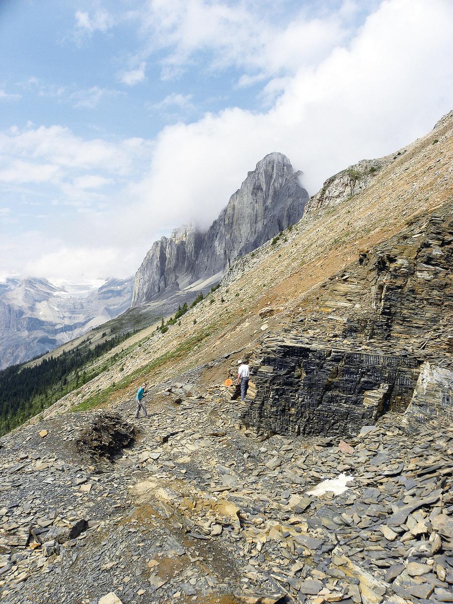 位於加拿大西北的英屬哥倫比亞境內落磯山脈的布爾吉斯頁岩印證了「寒武紀生命大爆發」這一生命進化史上的壯觀景象。(維基百科)