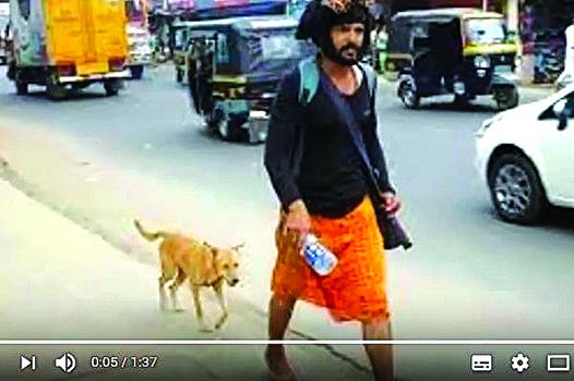 印度男子納溫(Naveen)徒步行走600多公里去朝聖,途中有一隻流浪狗緊緊相隨。(影片擷圖)