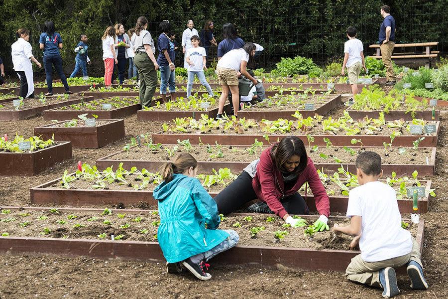 美國第一夫人宣佈繼續經營白宮菜園