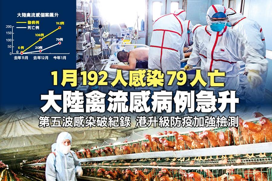 1月192人感染79人亡 大陸禽流感病例急升