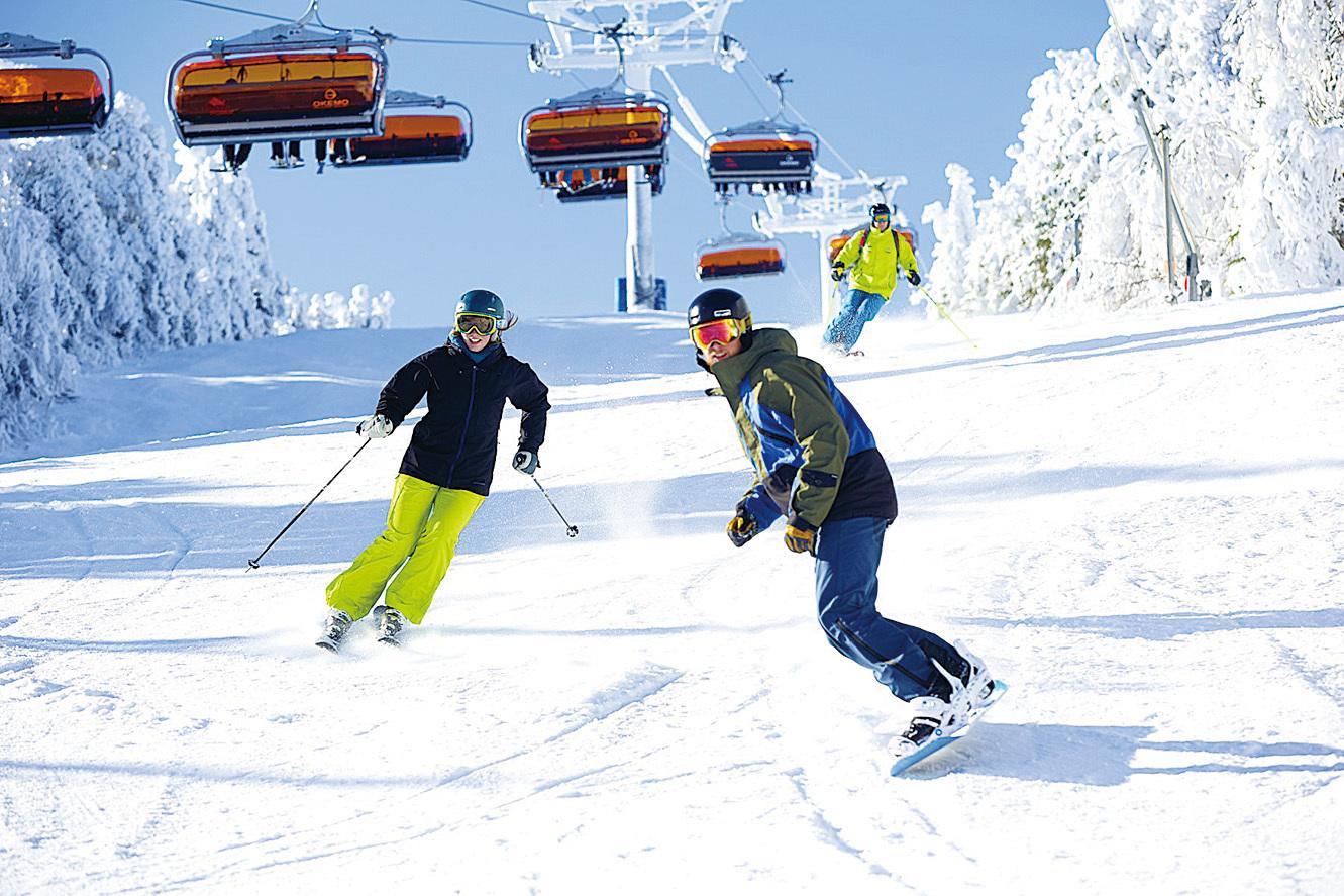Okemo滑雪場寬廣的雪道。(Okemo滑雪場提供)