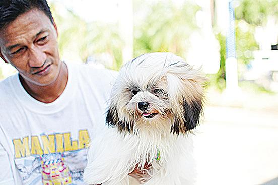 人類養狗的歷史超過3萬年。證據顯示,狗能感染人類情緒訊息,並調整自己的行為。(Getty Images)