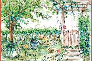 【彩繪生活】(308)竹籬笆的回憶