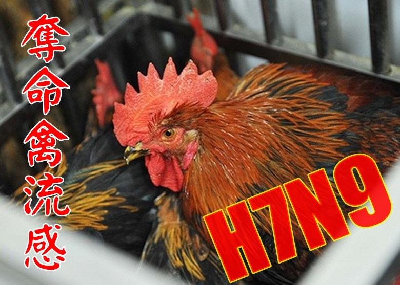 2月6日至12日一周內,大陸就新增61宗病例,其中8人死亡。香港衞生署衞生防護中心指,大陸自去年11月至今已通報419宗H7N9確診病例,大幅高於上一冬季同期,令人擔憂。(網絡圖片)