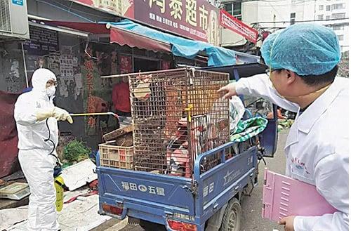 江西省南昌政府部門在活禽交易市場進行消毒防疫。(微博圖片)