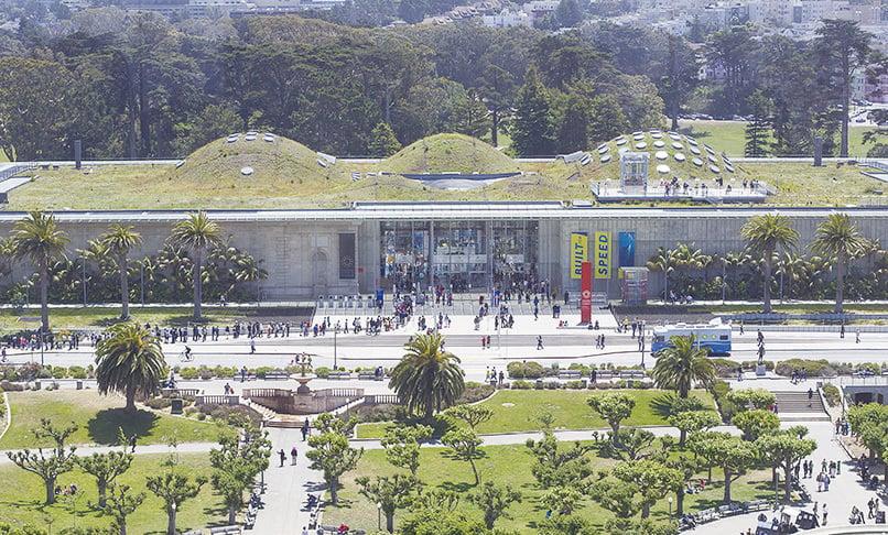 張志維的公司協助設計和完成加州科學博物館的綠屋頂。(李歐/大紀元)