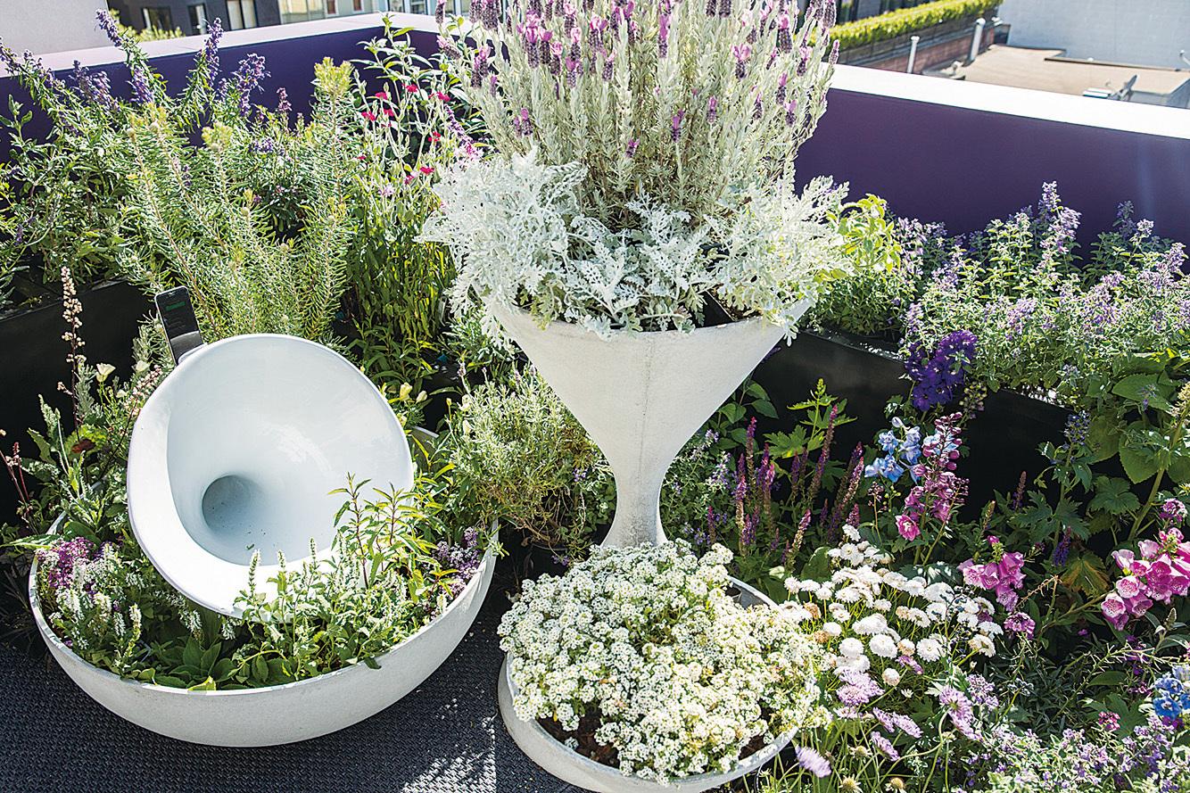 花園使用了超過40種的花卉植物。(張志維提供)