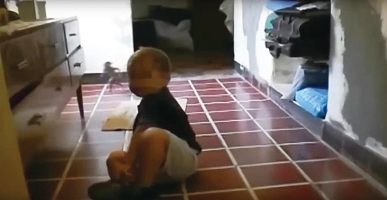 在網上廣泛流傳的一個短片。一個小孩在地上玩耍。期間一個人形小生物從後面跑出來。(視頻截圖)