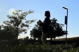 美移民局暫停加急件申請 留學生受衝擊最大